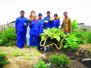 rural cooperative